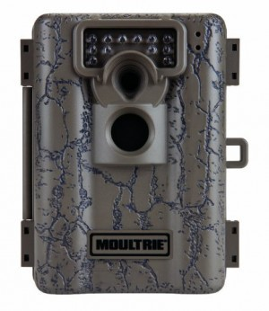 Best Trail Camera Reviews for 2015